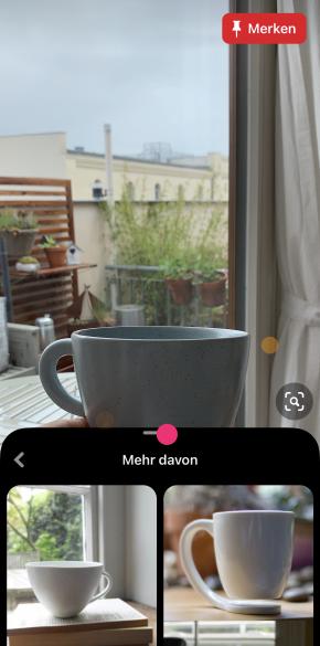 Visuelle Suche über die App in einer natürlichen Umgebung. Pinterest gibt als Ideen vor allem Pins mit einem ähnlichen Hintergrund.